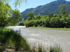 a side trip to view the newly freed Elwha River. Enjoyed watching shore birds and swallows swoop & dart, feeding on bugs!