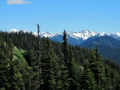 many stunning views at Hurricane Ridge