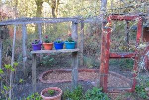 our 'chicken coop' garden