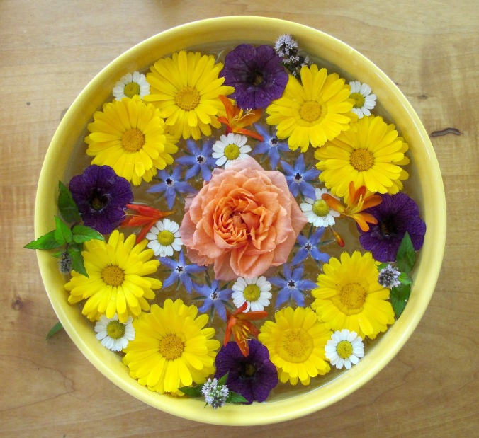 A 'floating' mandala on a hot day of calendula, borage, feverfew, mint, rose and other flowers.