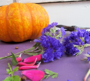 mandala left overs with a very hardy pumpkin that seemed to defy temperatures in the 20s and teens!