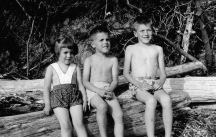 Sept 1953097