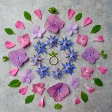 To see other recently made mandala's check out my second page of mandalas: Mandalas II or my mandala home page at: Floral Mandalas